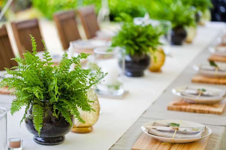 Simple centerpiece with ferns