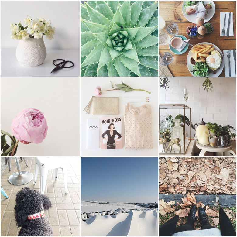 June-Instagram-Roundup-Made-From-Scratch